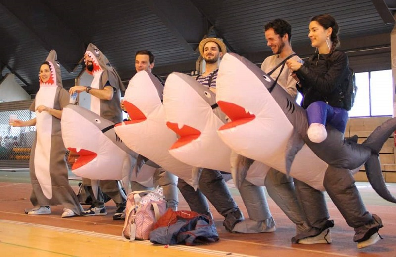 Des supporters des Sharks